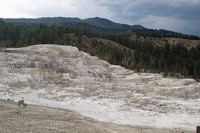 Terraces at Mammoth Hot Springs